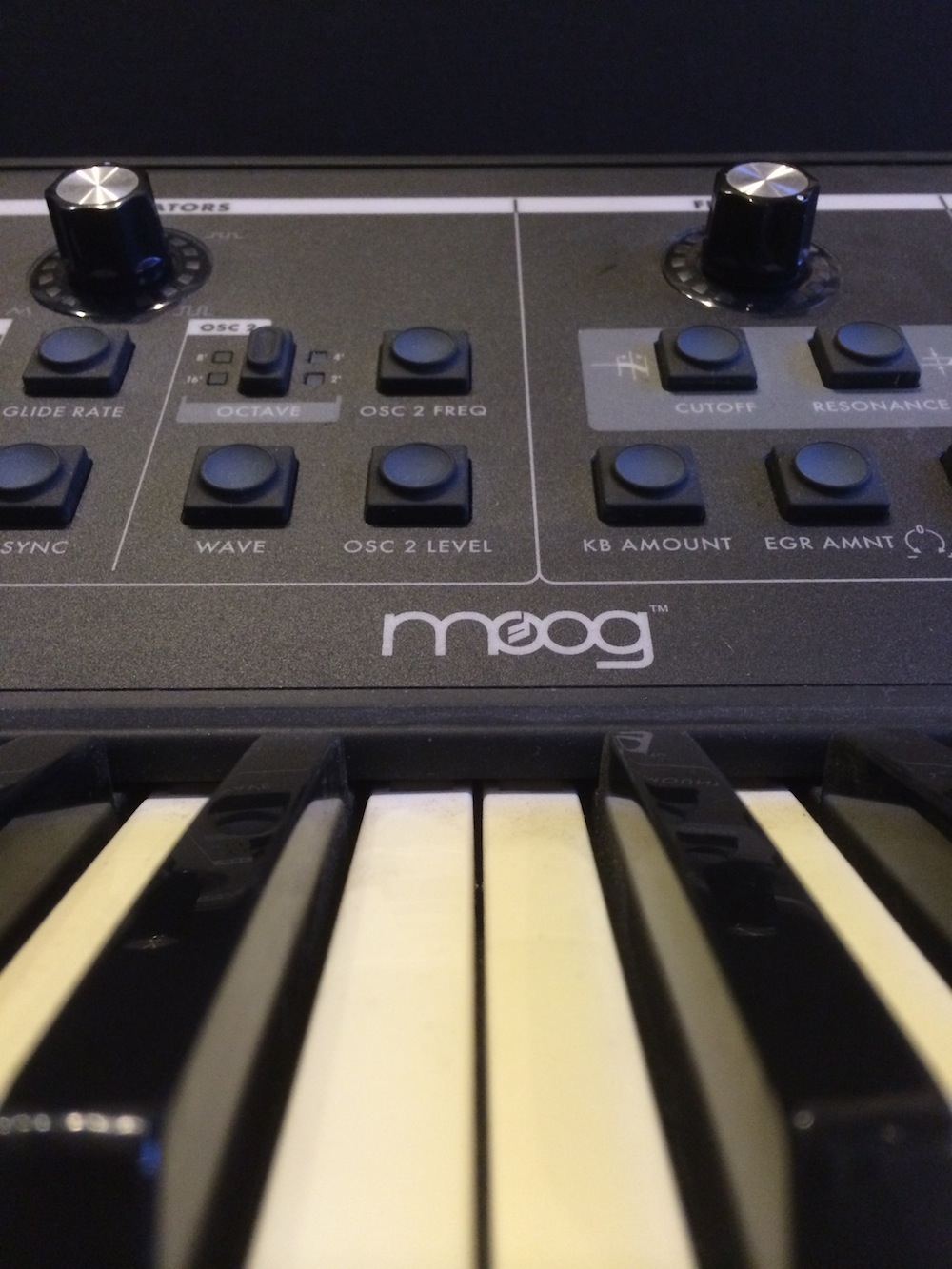 NYC Recording Studio Gear Moog Little Phatty Stage II